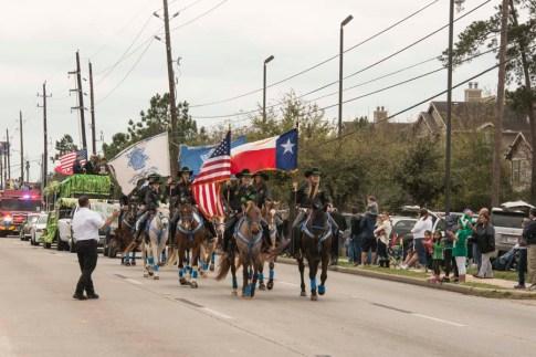Parade Horses